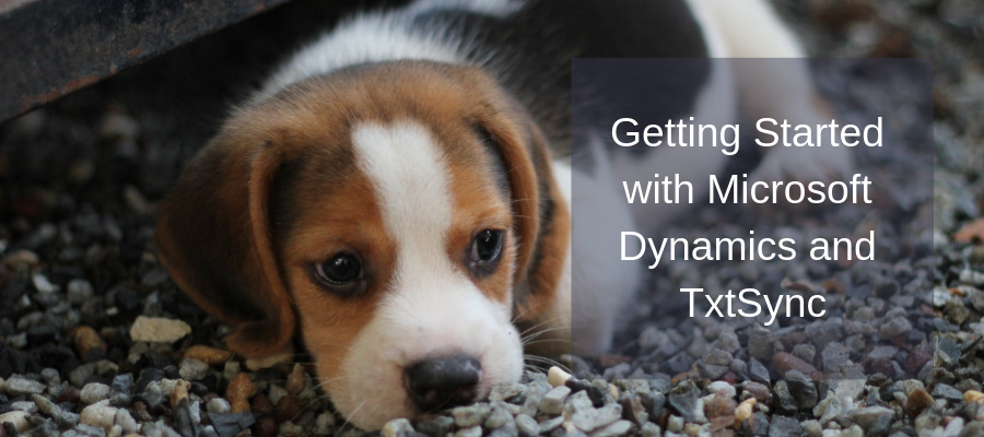 Getting Started with Microsoft Dynamics and TxtSync